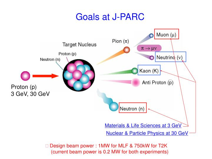 Nuclear & Particle Physics at 30 GeV