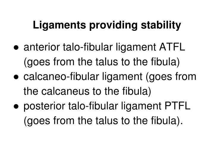 Ligaments providing stability