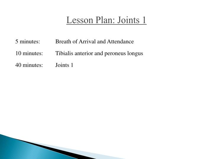 lesson plan joints 1 n.
