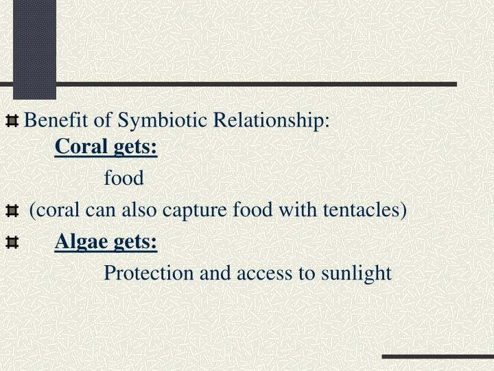 Benefit of Symbiotic Relationship:
