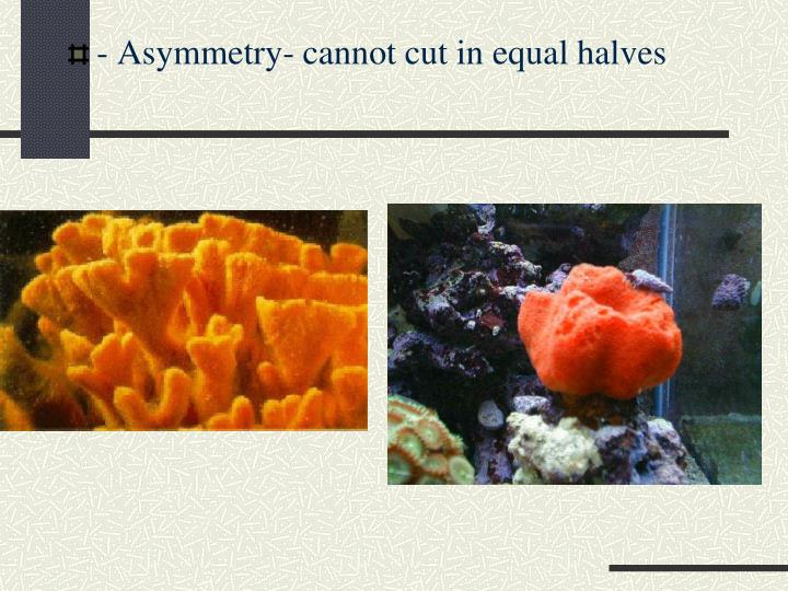 - Asymmetry- cannot cut in equal halves