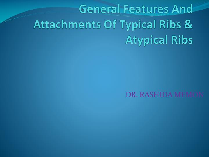 general features and attachments of typical ribs atypical ribs n.