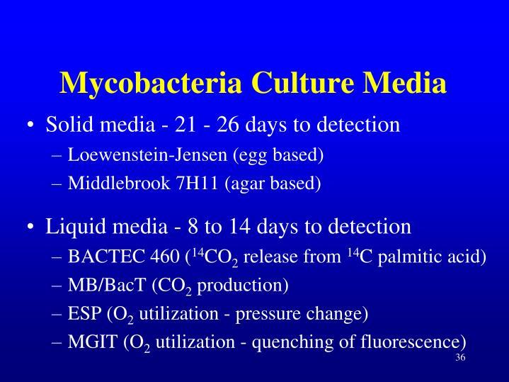 Mycobacteria Culture Media