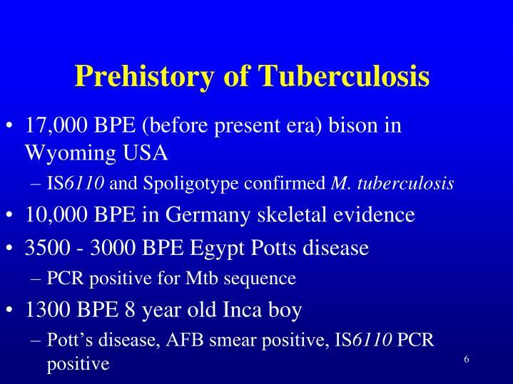 Prehistory of Tuberculosis