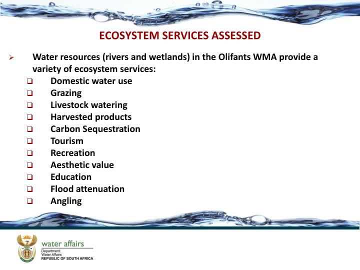 ECOSYSTEM SERVICES ASSESSED