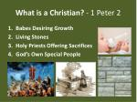 what is a christian 1 peter 2