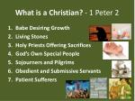 what is a christian 1 peter 21