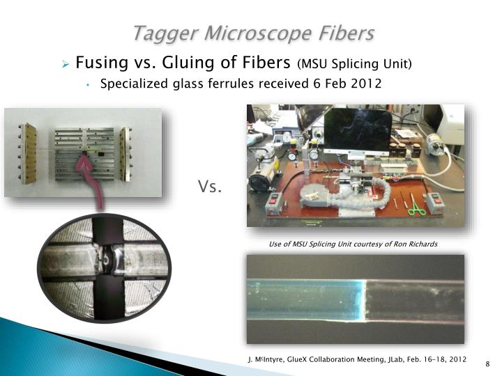 Tagger Microscope Fibers