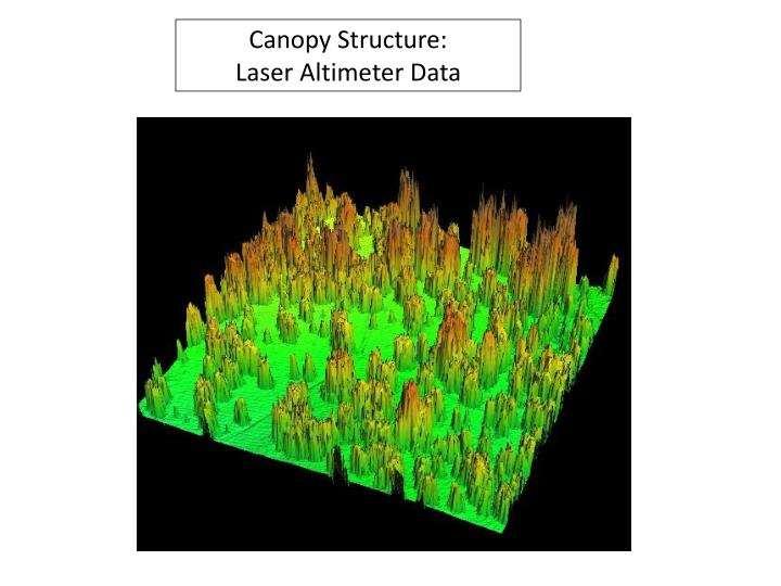Canopy Structure: