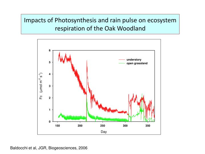 Impacts of Photosynthesis and rain pulse on ecosystem respiration of the Oak Woodland
