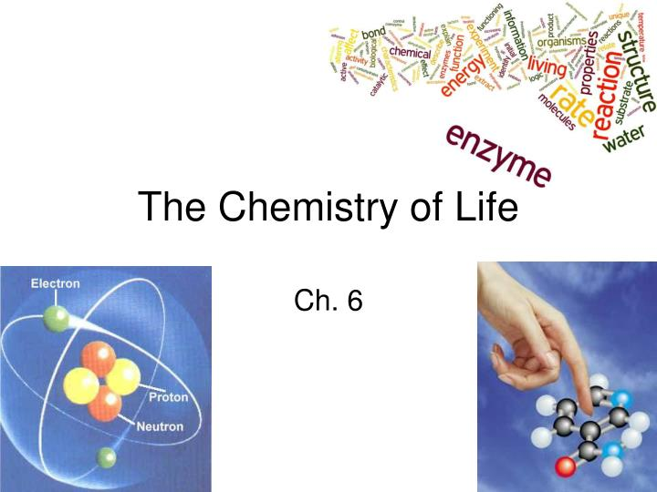 chemicals of life Researchers may have solved origin-of-life conundrum the origin of life on earth is a set of but it can also serve as a proteinlike chemical catalyst.