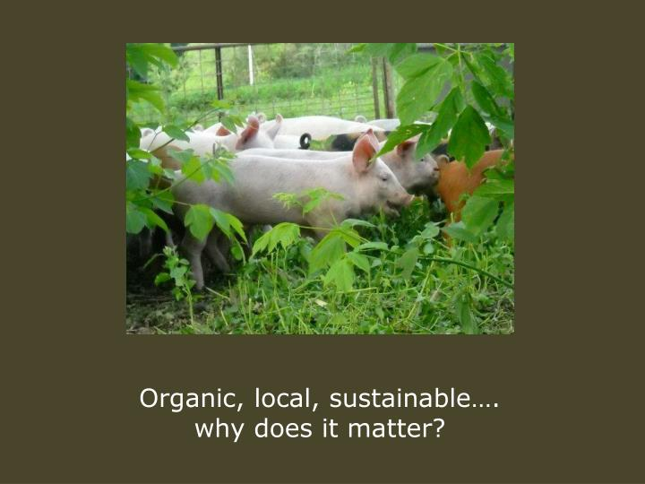 Organic, local, sustainable….