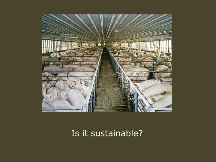 Is it sustainable?