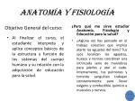 anatom a y fisiolog a