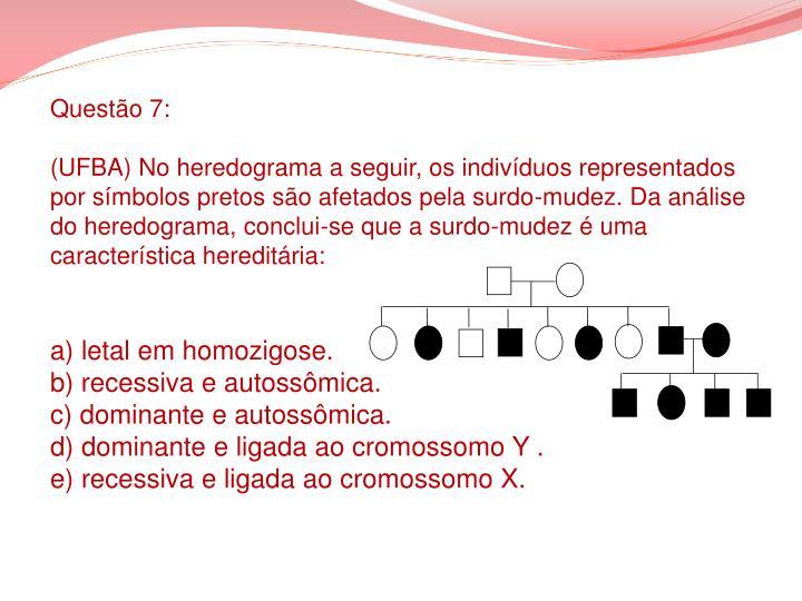 Questão 7: