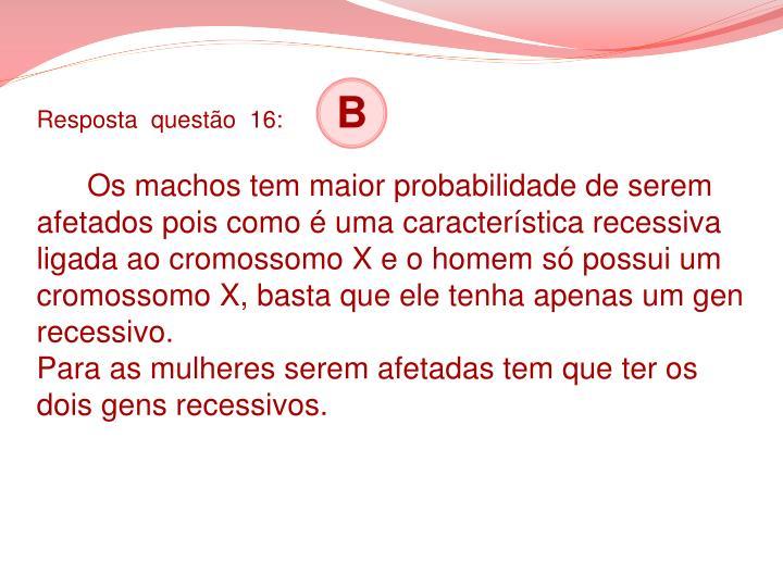 Resposta  questão  16: