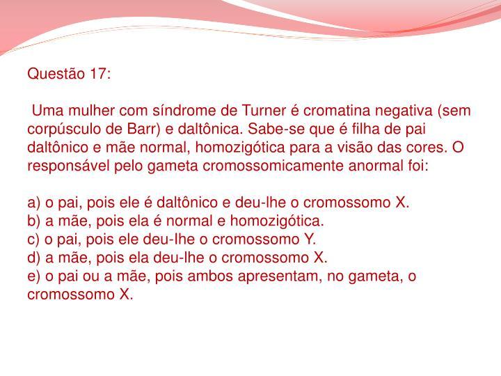 Questão 17: