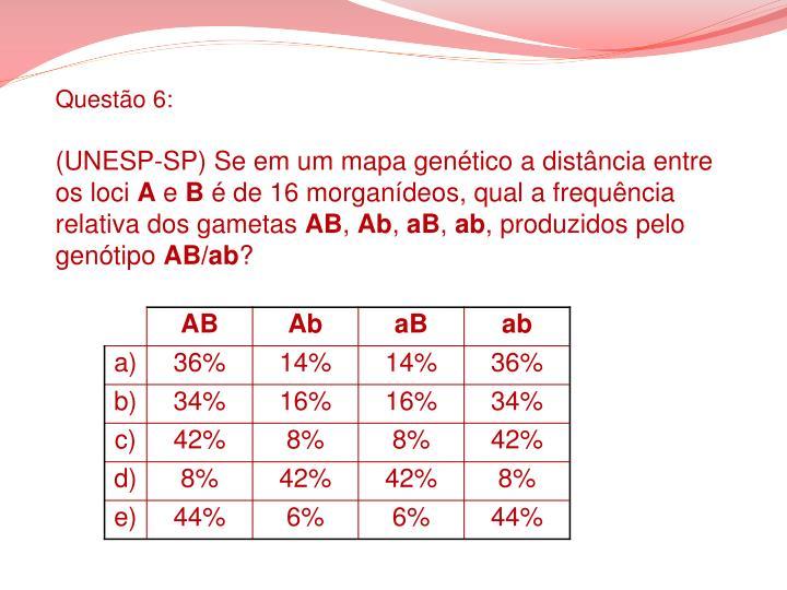 Questão 6: