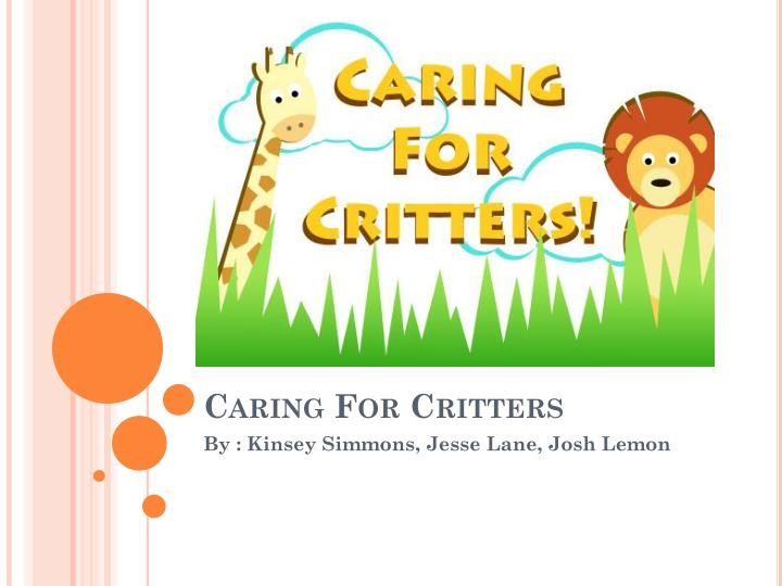 caring for critters n.