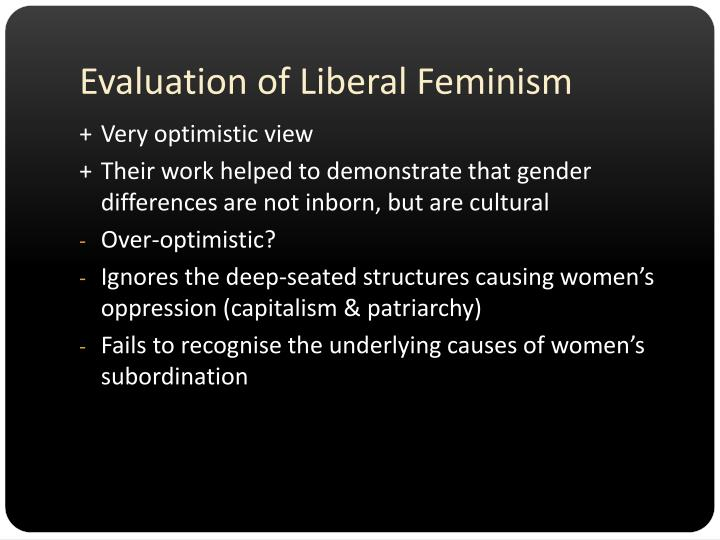 Evaluation of Liberal Feminism