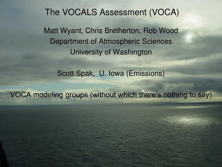 the vocals assessment voca n.