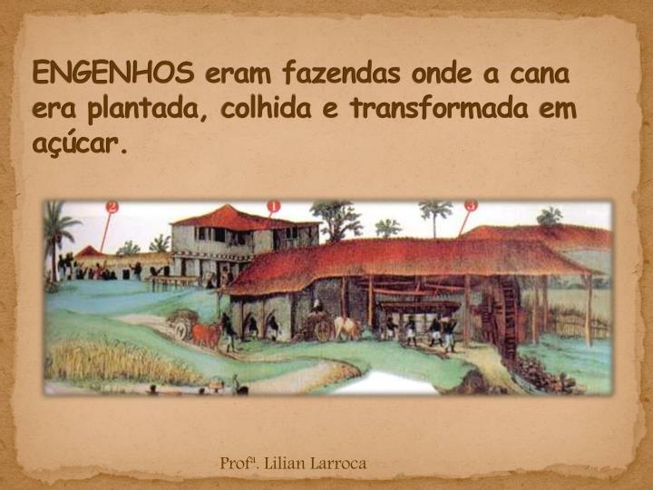 Engenhos eram fazendas onde a cana era plantada colhida e transformada em a car