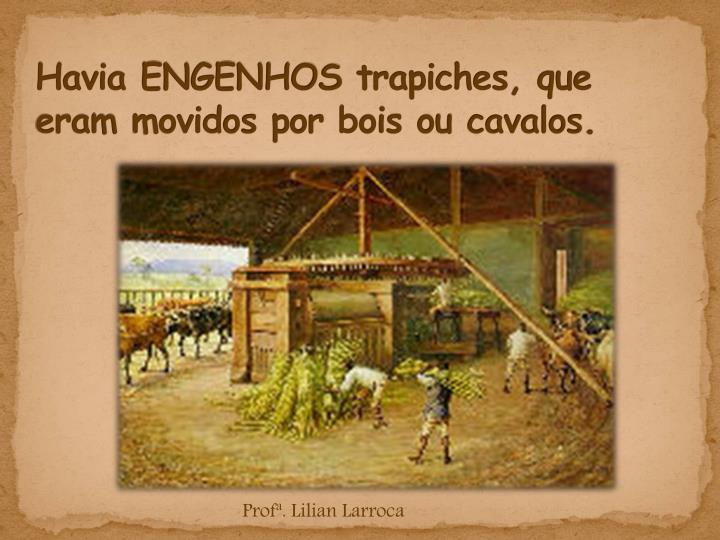 Havia engenhos trapiches que eram movidos por bois ou cavalos