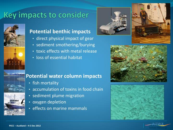 Key impacts to