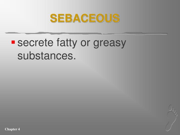 SEBACEOUS