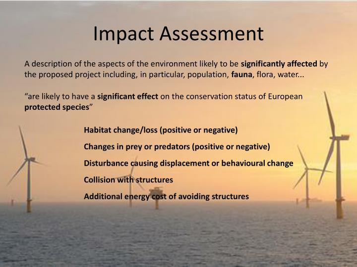 Impact Assessment