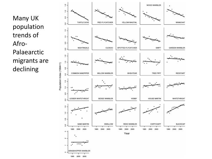 Many UK population trends of Afro-Palaearctic migrants are declining