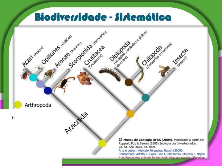 Biodiversidade - Sistemática