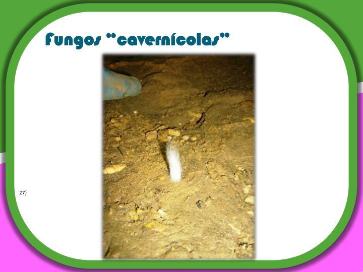 """Fungos """"cavernícolas"""""""