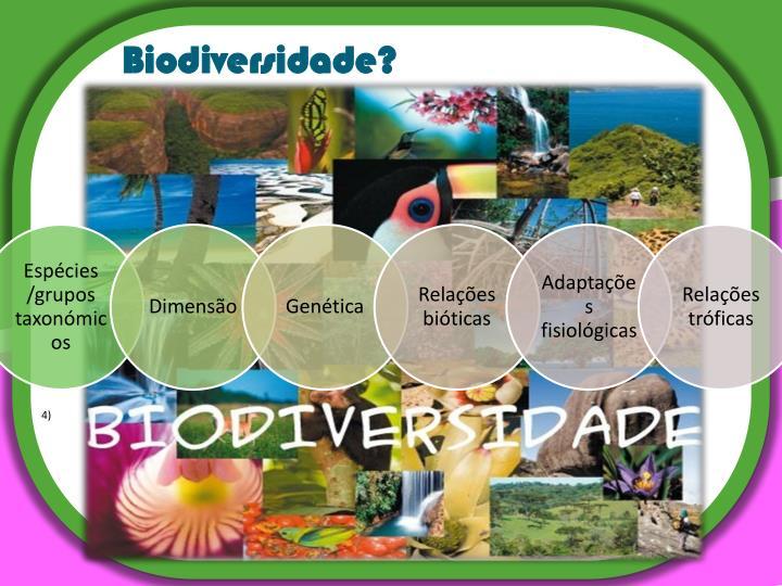 Biodiversidade?