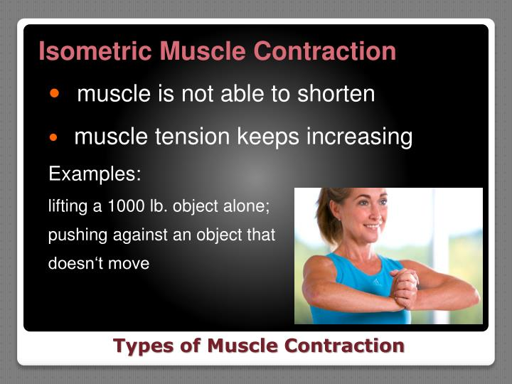 Isometric Muscle Contraction
