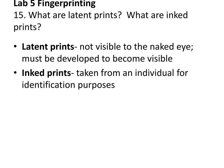 Lab 5 Fingerprinting