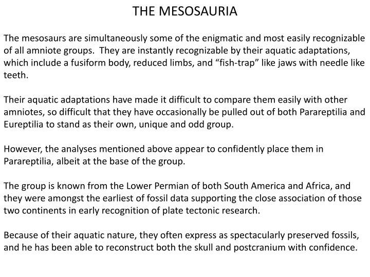THE MESOSAURIA