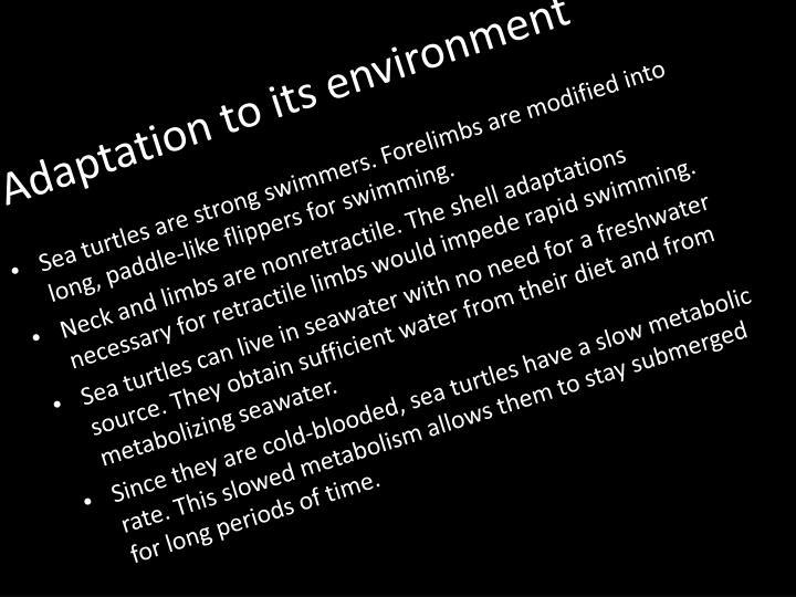 Adaptation to its environment