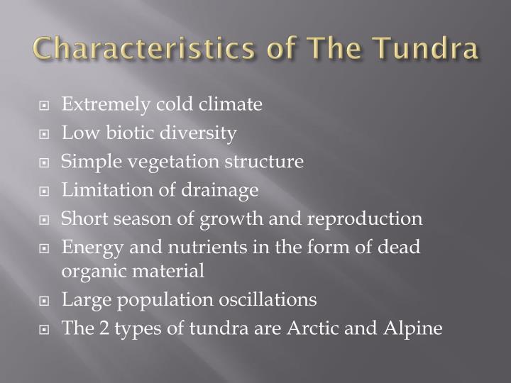 Characteristics of the tundra