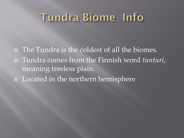Tundra biome info