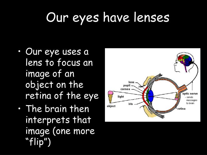 Our eyes have lenses