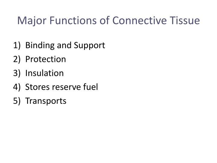 Major Functions of Connective Tissue