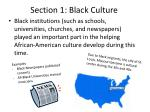 section 1 black culture