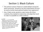 section 1 black culture1