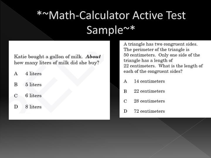 *~Math-Calculator Active Test Sample~*