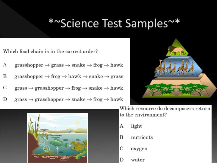 *~Science Test Samples~*