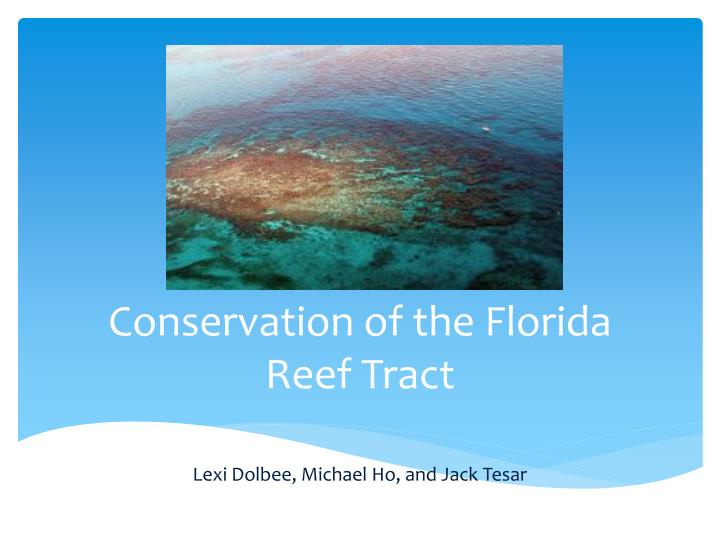Conservation of the florida reef tract