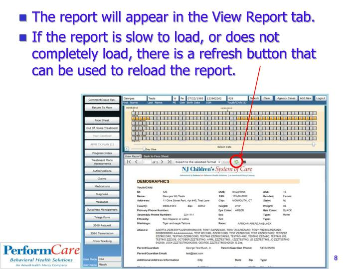 The report will appear in the View Report tab.