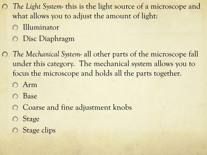 The Light System