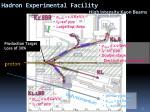 hadron experimental facility